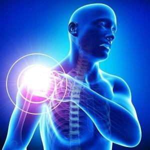 omuz hastalıkları